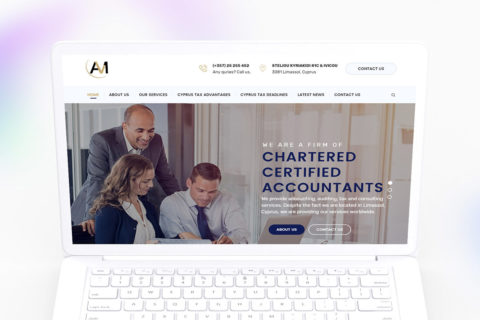 Natasa Lagou - Projects, A.L.M Audit and Tax services web design